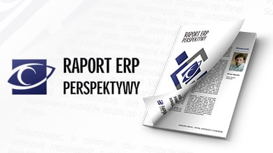 Raport ERP